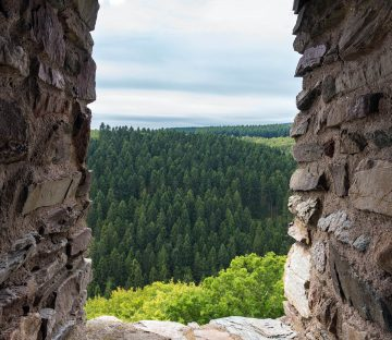 Germany Castle Window Destination Hero Image