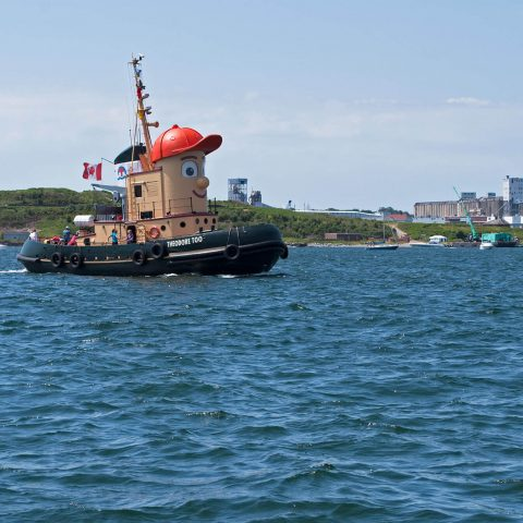 Halifax Harbour And Theodor The Tug Boat In The City, Nova Scotia, Canadian Splash