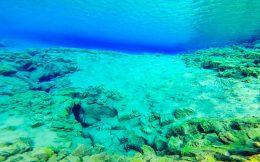 The Barren Lagoon