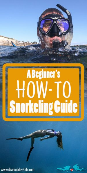 How To Snorkel Guide