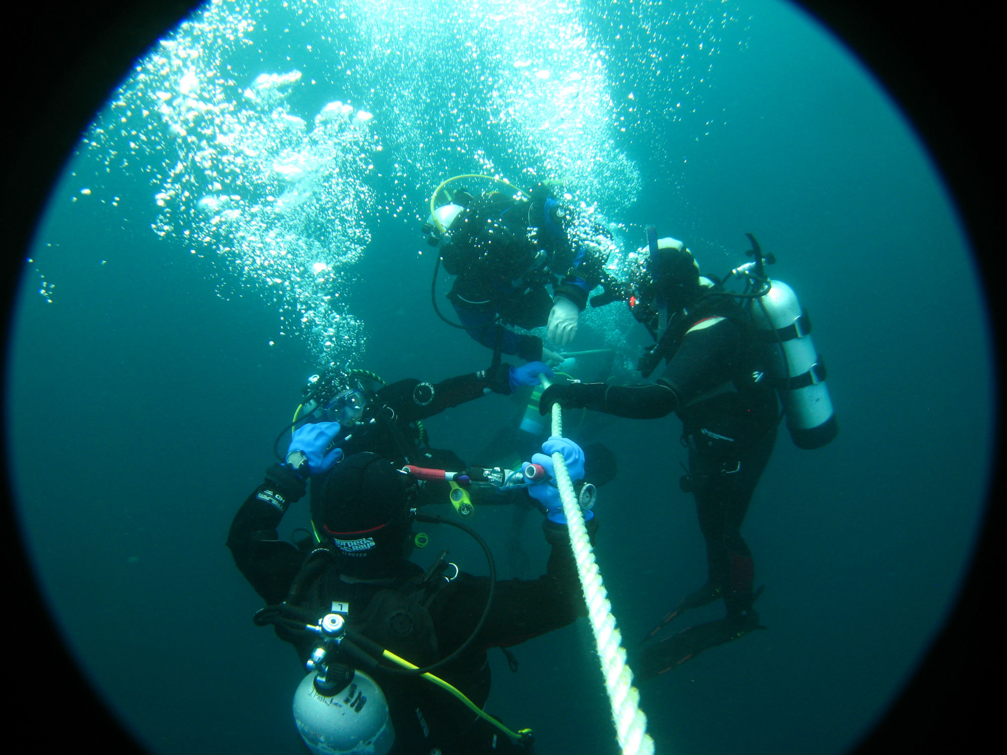 A Group of Divers Doing a Safety Stop on the Arabia Wreak in Tobermory