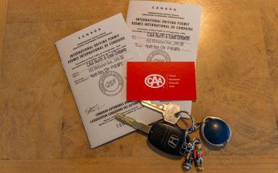 International Drivers License Top
