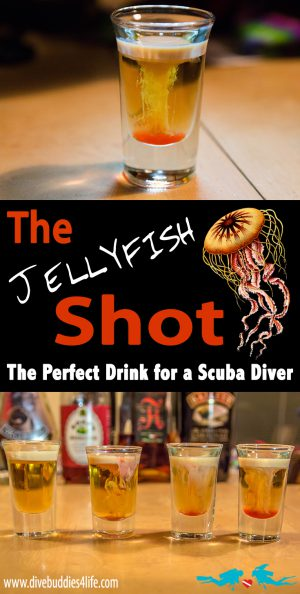 Jellyfish Shot Pinterest
