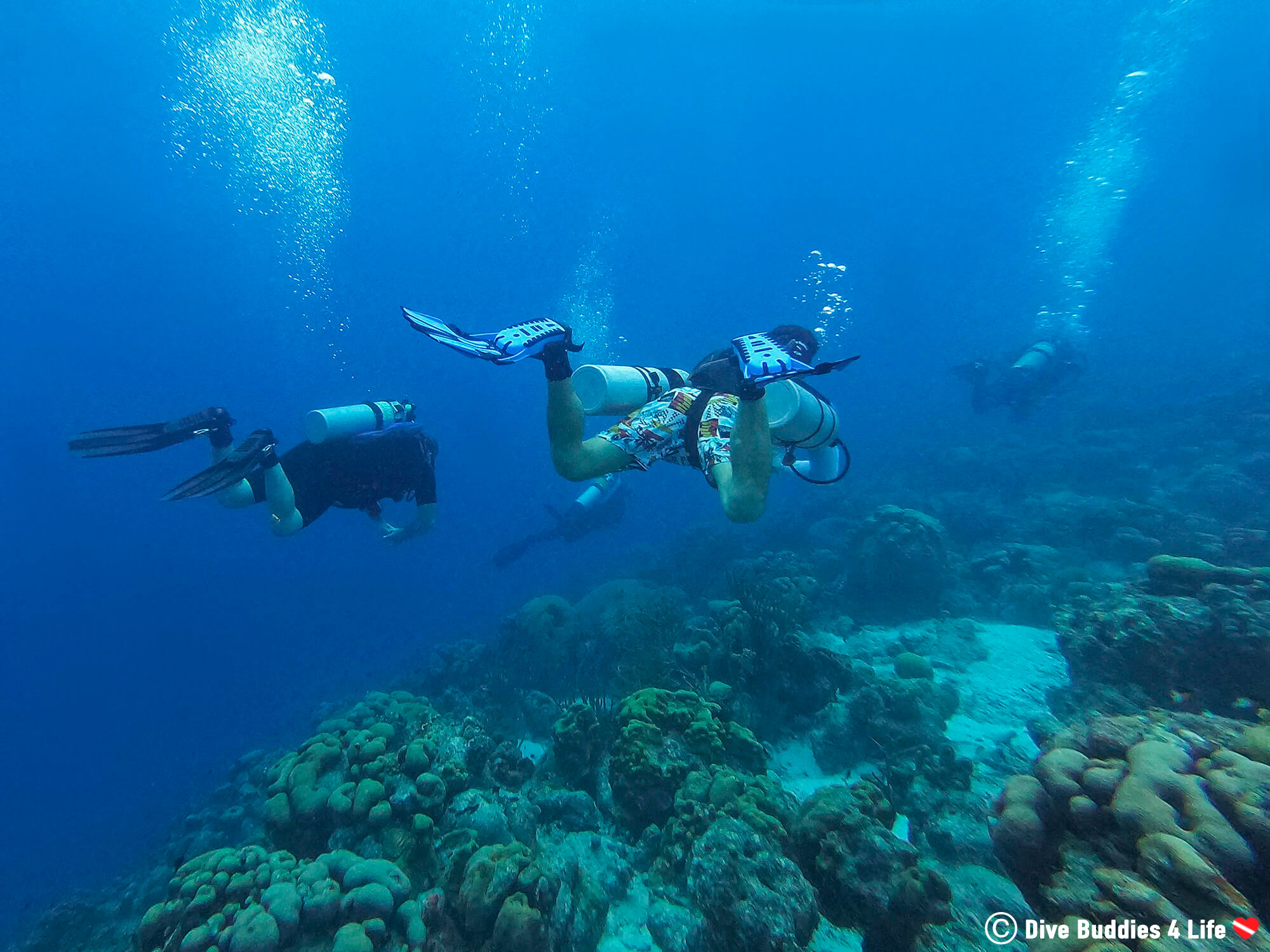 Joey And A Group Of Scuba Divers Sidemounting Along The Coral Reef In Bonaire, Dutch Caribbean