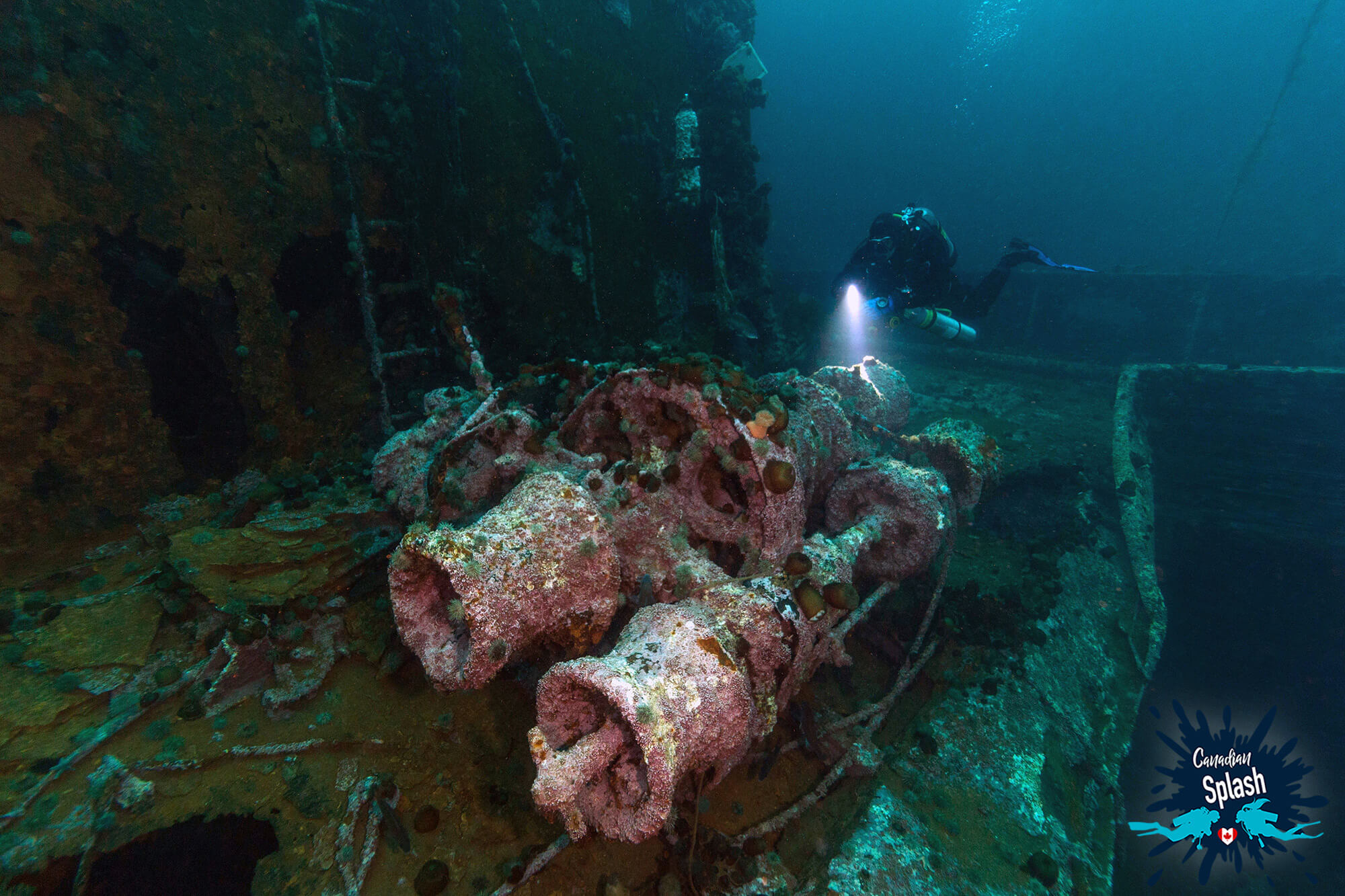 Joey Checking Out The Gear And Motor Of The Saganaga Shipwreck At Bell Island, Newfoundland, Canada