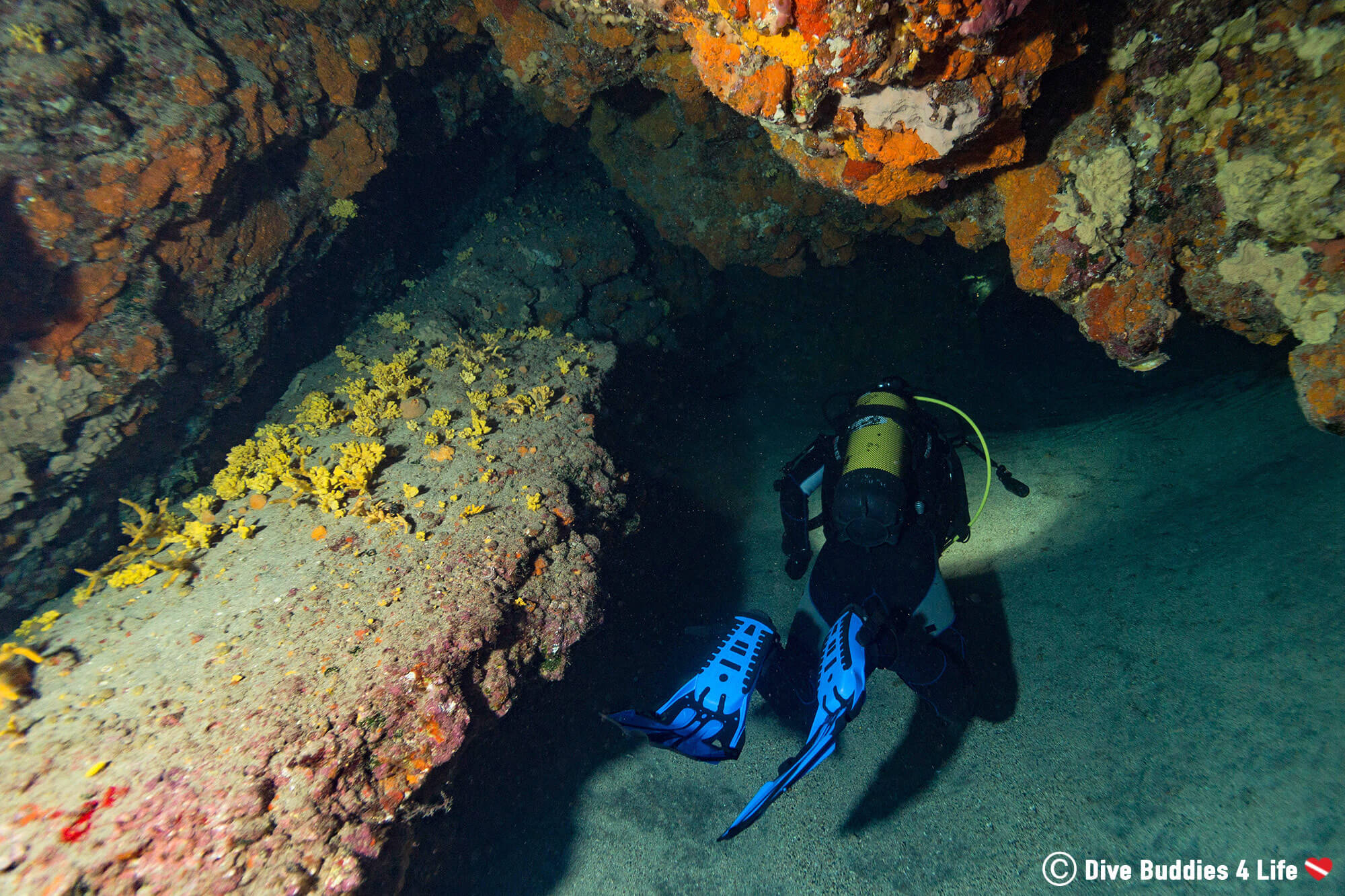Joey Exploring A Cave On Lanzarote In His Scuba Gear, Canary Islands, Spain