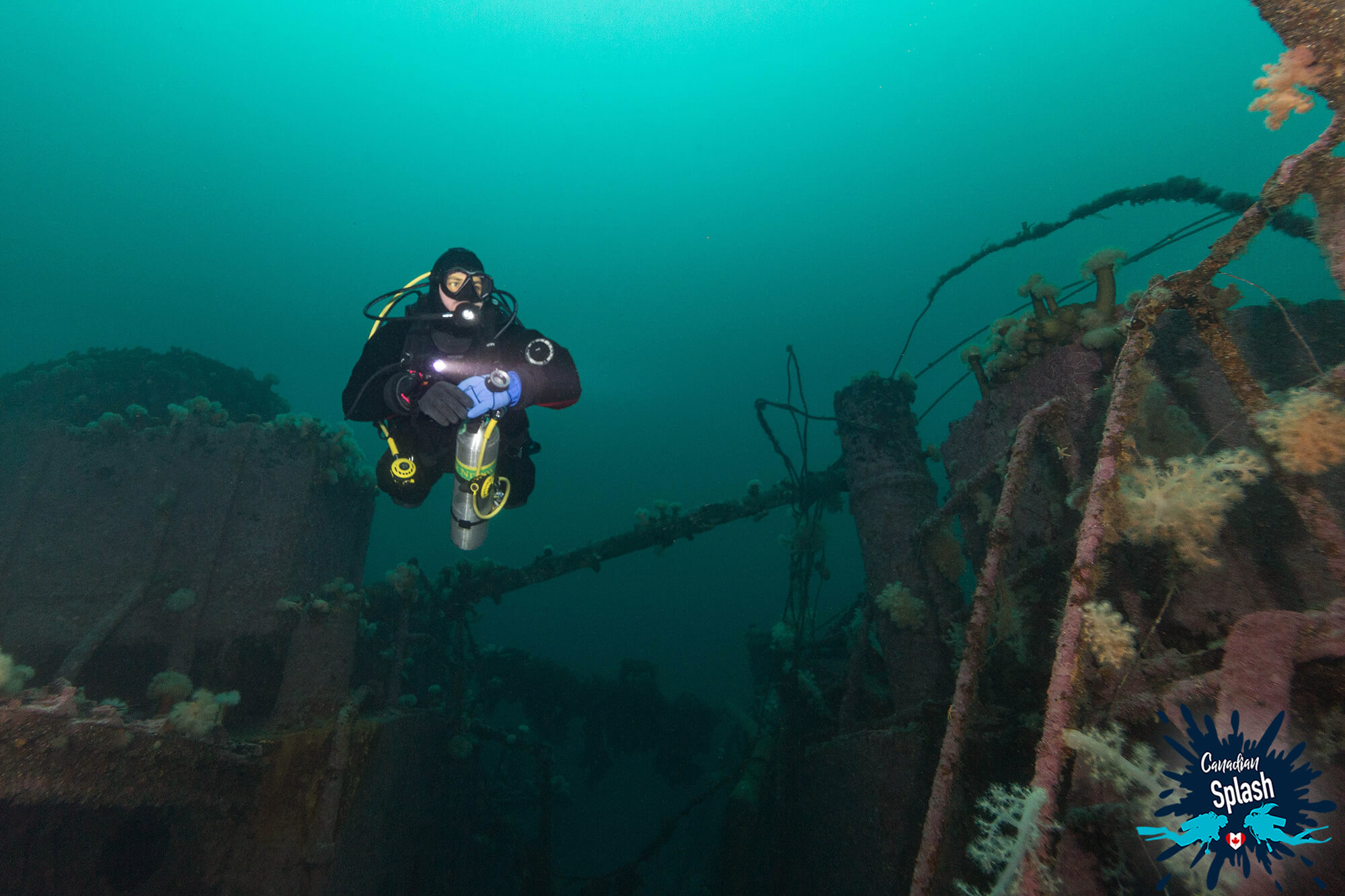 Joey Exploring The Rose Castle In Newfoundland, Scuba Diving Canada