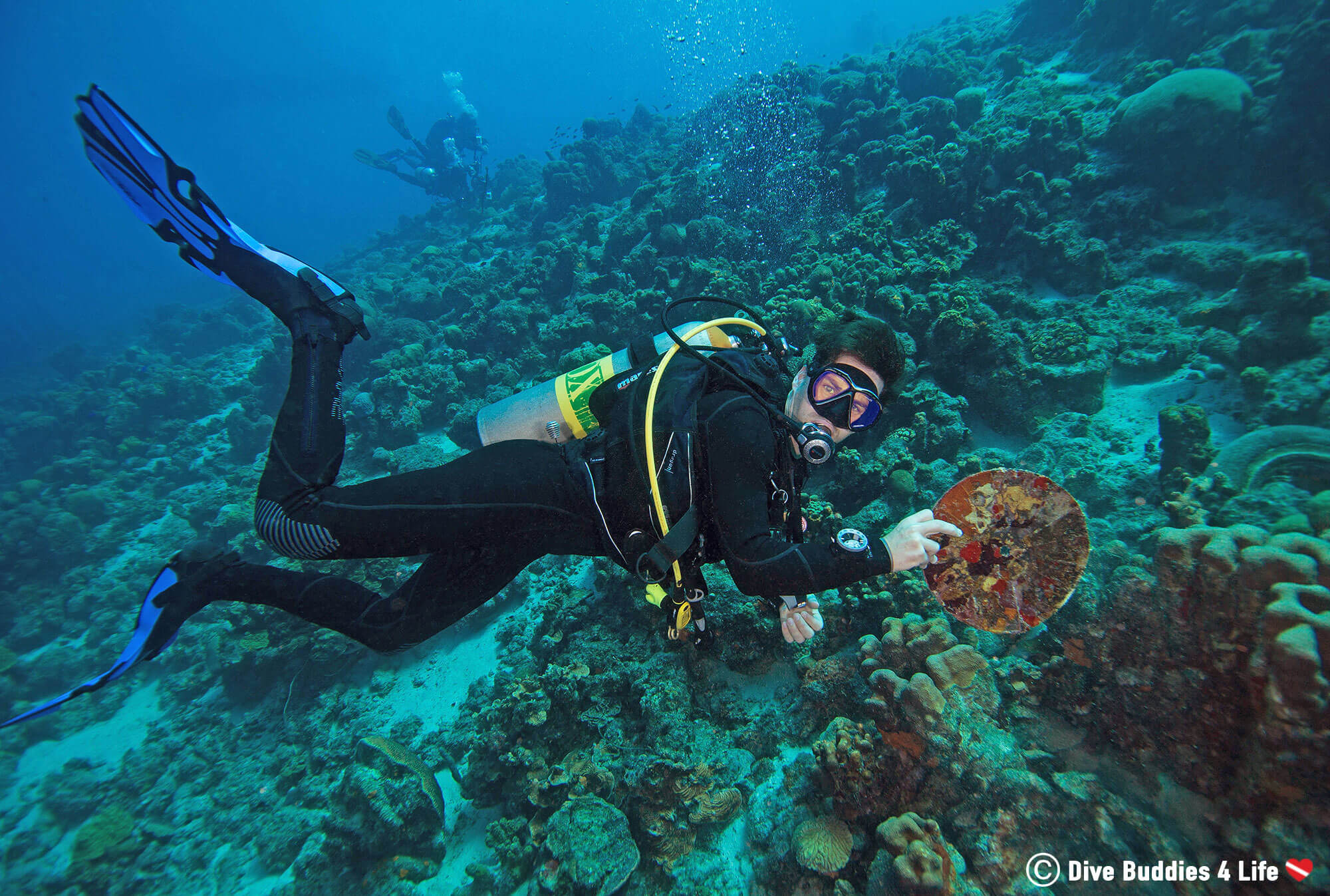 Joey Finding A Metal Disc On His Clean Up Dive In The Bonaire Sailing Club Marina With Dive Friends
