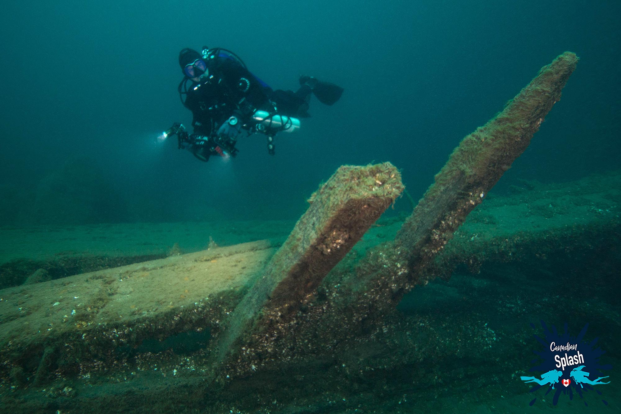 Joey Floating Above The Philo Scoville Wreck In Tobermory, Ontario, Scuba Diving Canada