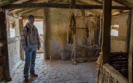 Joey Inside The Bay Of Bones Houses
