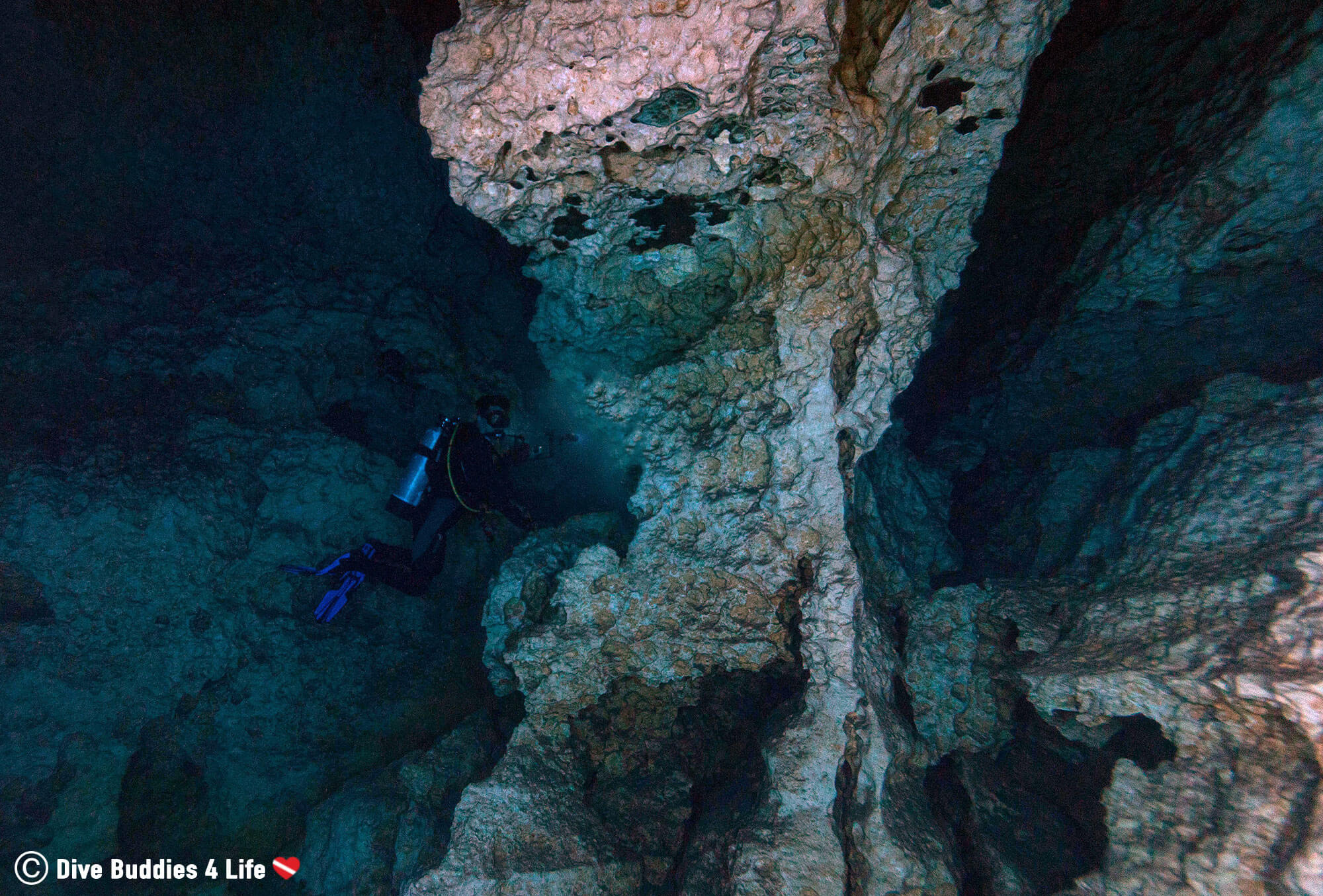 Joey Inspecting The Ancient Rock Formations Of The Devil's Den In Scuba Gear, Florida, USA