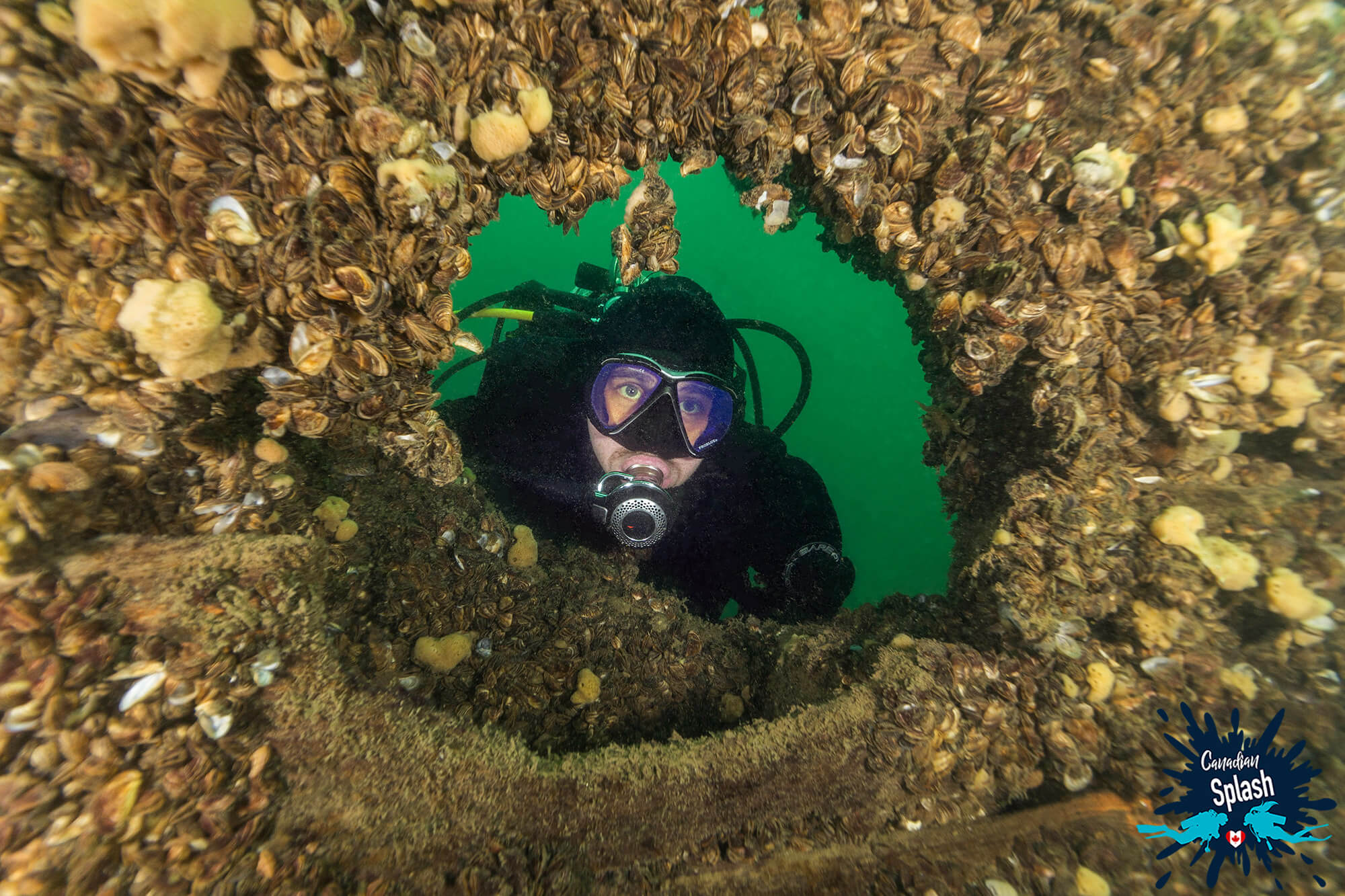 Joey Looking Through The Porthole Of A Shipwreck While Scuba Diving In Brockville, Ontario For Canadian Splash