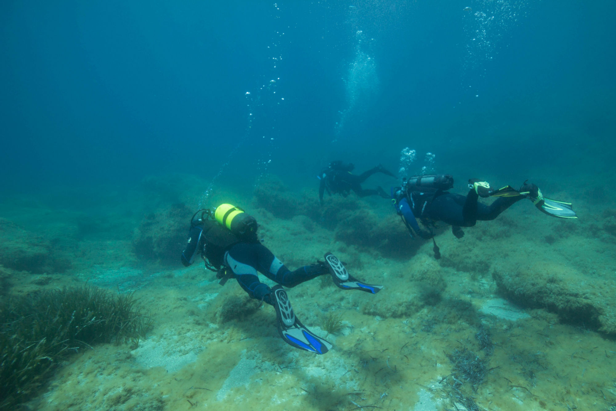 Joey, Nadine And Maximo Diving Along The Bottom