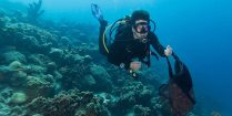 Joey Scuba Diving With A Bag Full Of Collected Trash In Bonaire During A Dive Friends Clean Up Dive