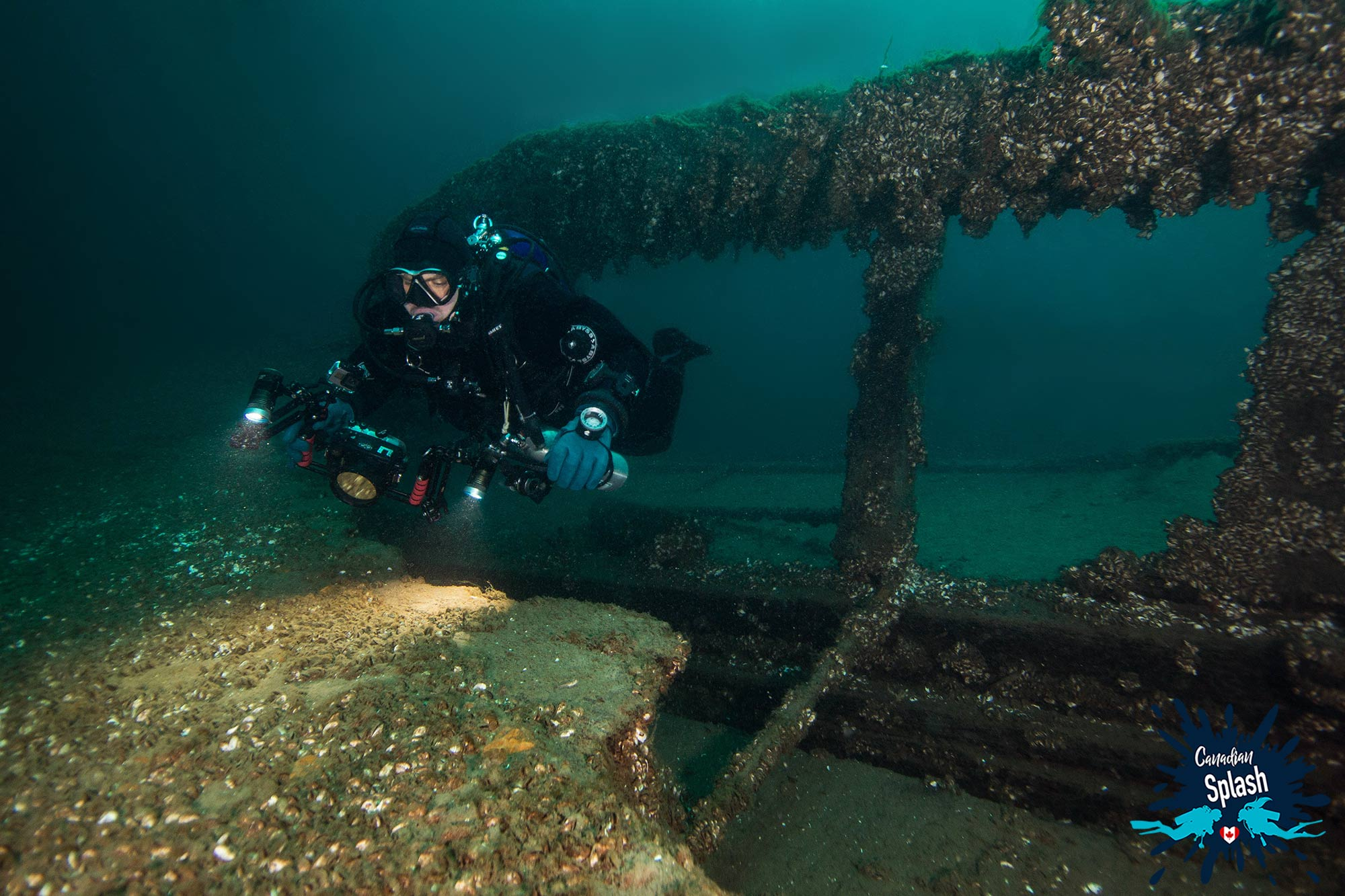 Joey Swimming Through The Wooden Remains Of The Forest City Shipwreck In Tobermory, Ontario, Scuba Diving Canada