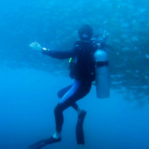 Joey Scuba Diving with the Wall of Fish in Costa Rica
