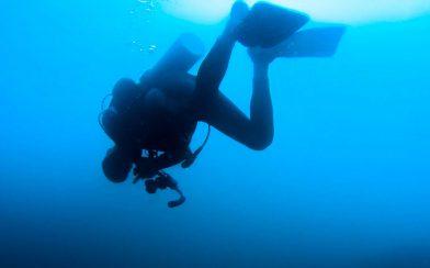 Scuba Dive Buddy Joey Floating Upside Down at Bat Islands