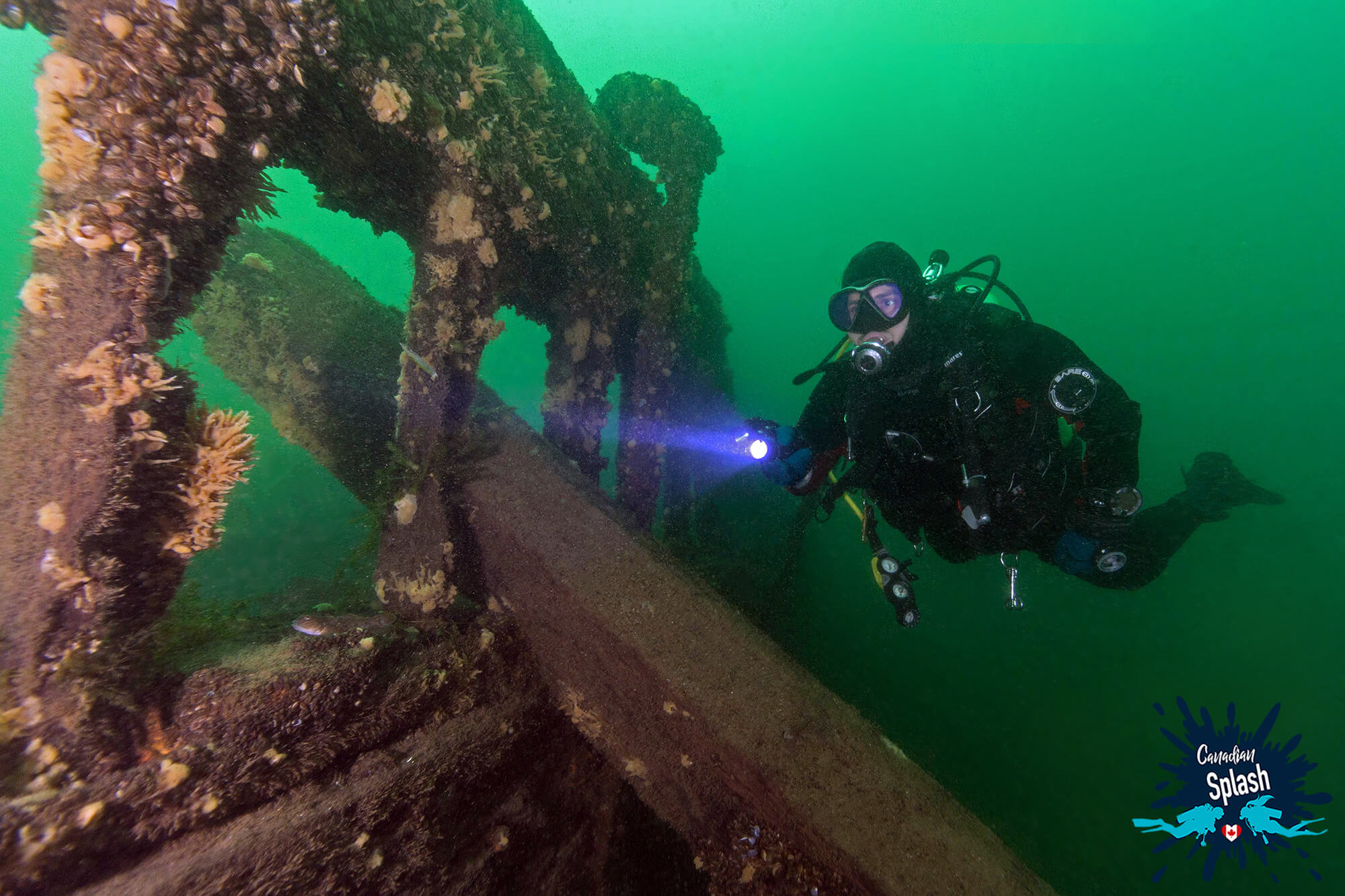 Joey In His Scuba Diving Gear Taking A Look At The Robert Gaskin Shipwreck In Brockville, Ontario