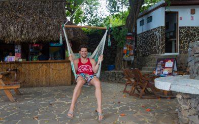 Joey On The Swing