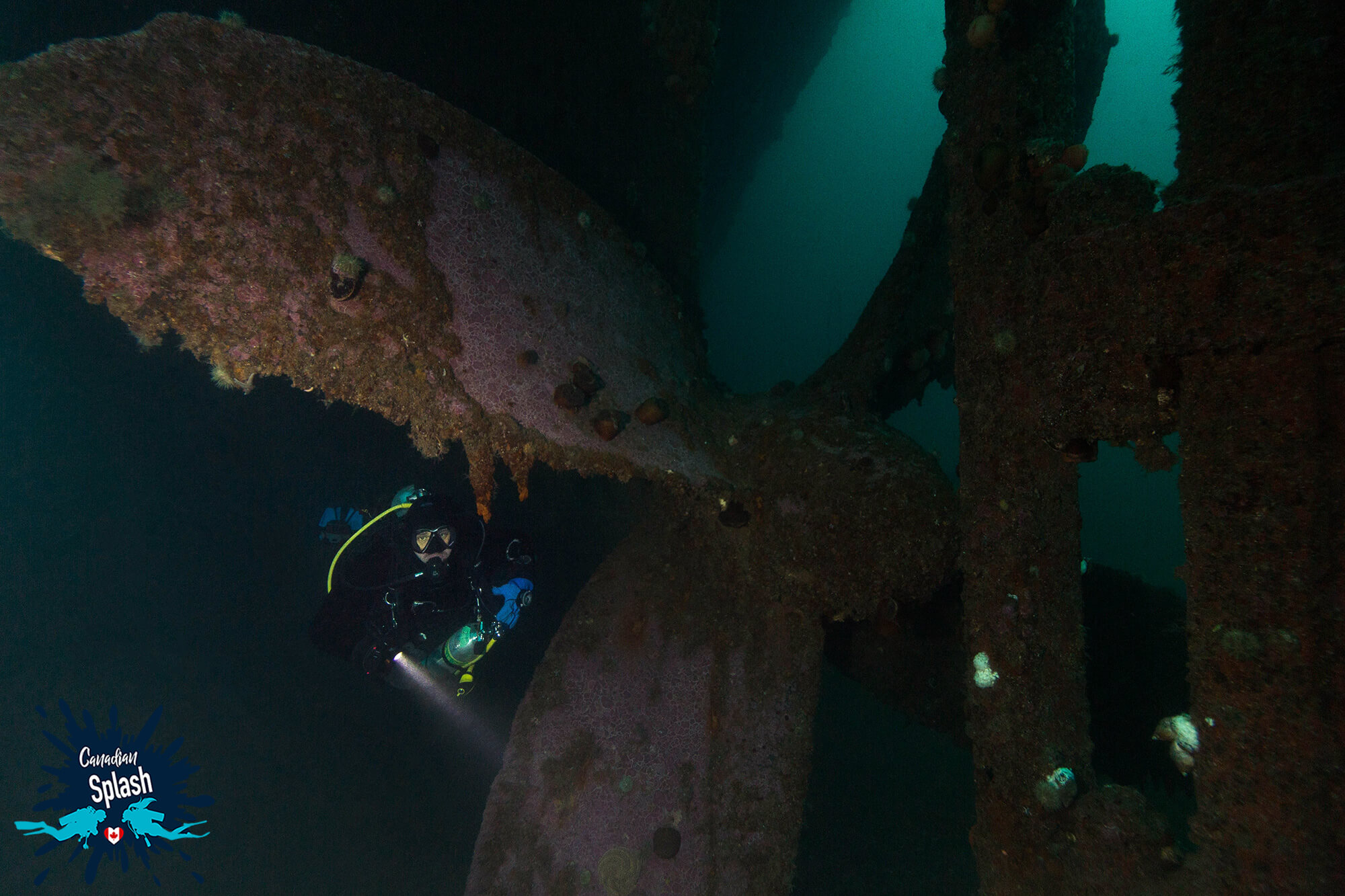 Joey The Scuba Diver Below The Large Anchor Of The PLM Ship, Bell Island Newfoundland, Canadian Scuba Diving