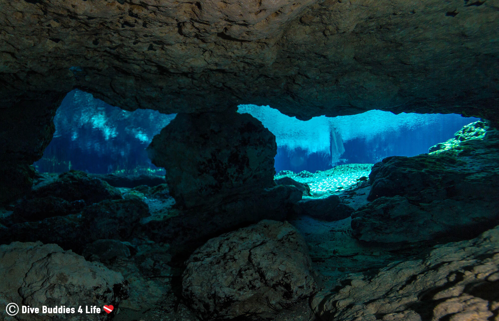 Looking Out Of The Cavern From Underwater In Ginnie