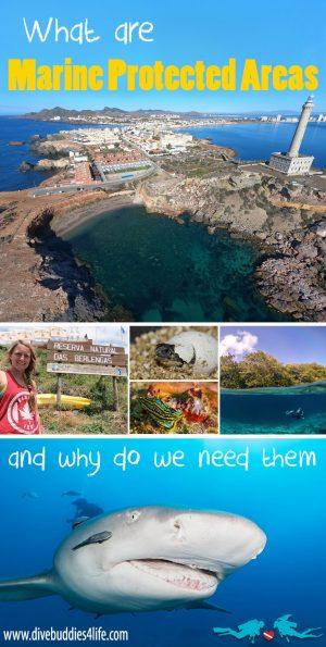 Marine Protected Areas Pinterest
