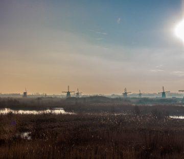 Netherlands - Windmills on the Horizon