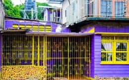 Nicaraguan Purple House