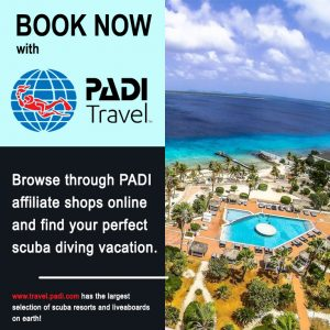 PADI Travel Booking Dive Buddies Sidebar Ad