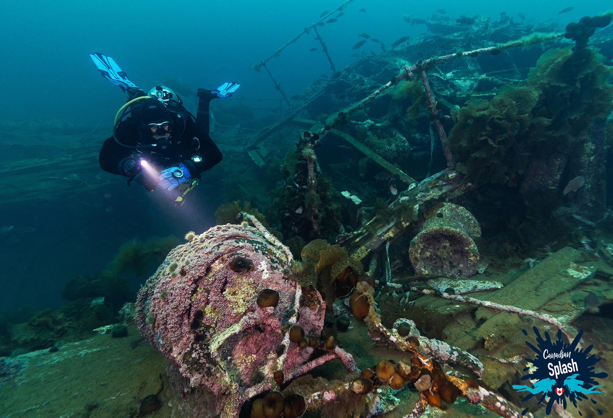 The PLM Shipwreck Motor with a Scuba Diver Looking at it with a Light on Bell Island, Newfoundland, Canadian Splash