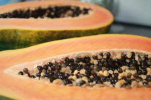A Delicious Papaya from Cuba