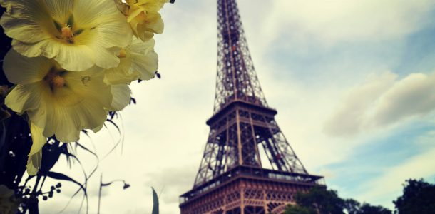 Paris Tower and Flowers