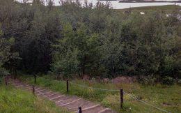 Path Down to Myvatn Lake