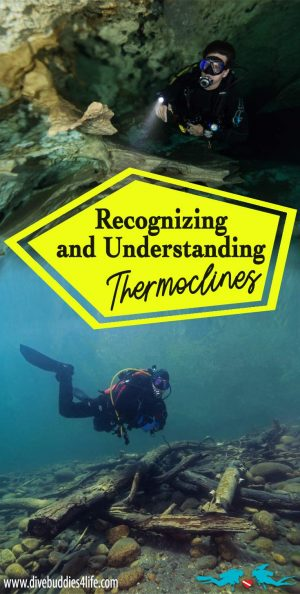 Recognizing And Understanding Thermoclines In Scuba Diving