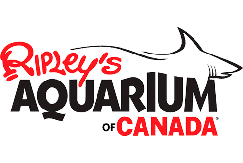 Ripley's Aquarium Of Canada Partner In The Canadian Splash Scuba Diving Project