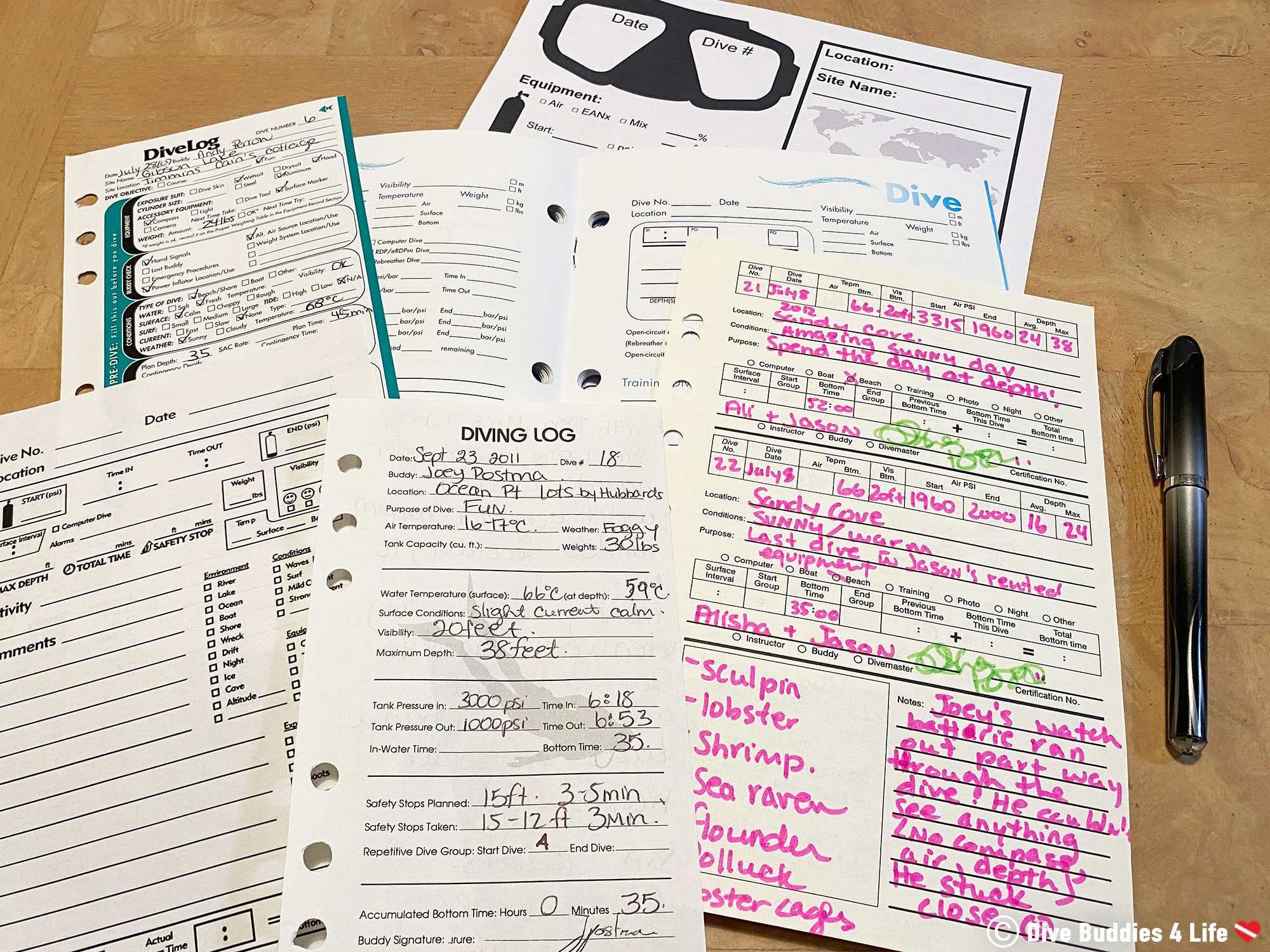 Sample Printouts Of A Variety Of Scuba Diving Logbook Pages To Record Dives