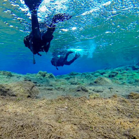 Sandy Bottom Lagoon and Two Divers