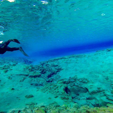 Sandy Bottom Lagoon with Single Diver