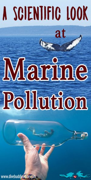 Scientific Look At Marine Pollution