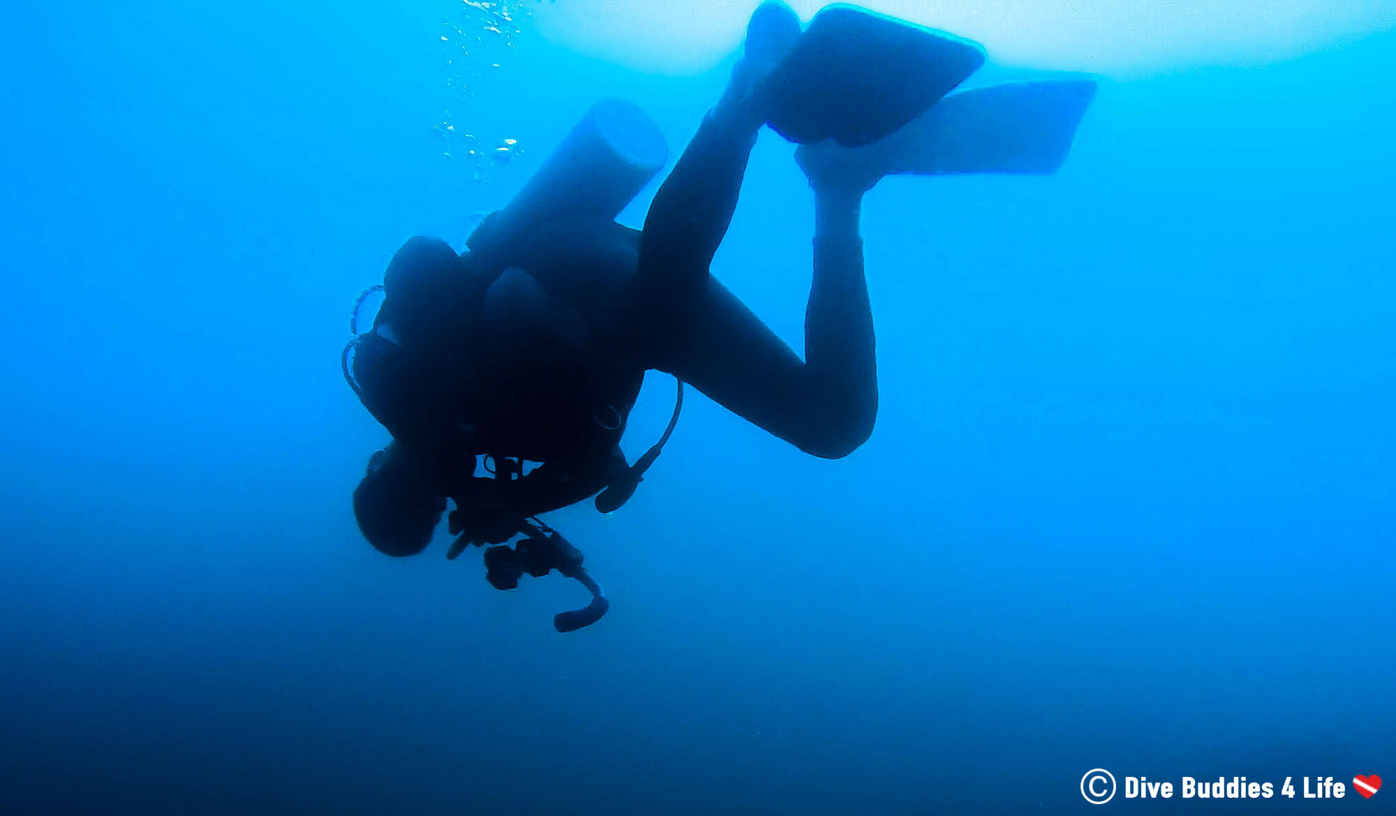 Scuba Diver Joey Floating Upside Down At His Safety Stop In The Bat Islands, Costa Rica