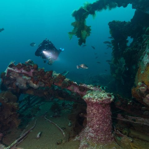 Scuba Diver Joey Lighting Up An Underwater Shipwreck On Bell Island, Newfoundland, Scuba Diving Locations In Canada