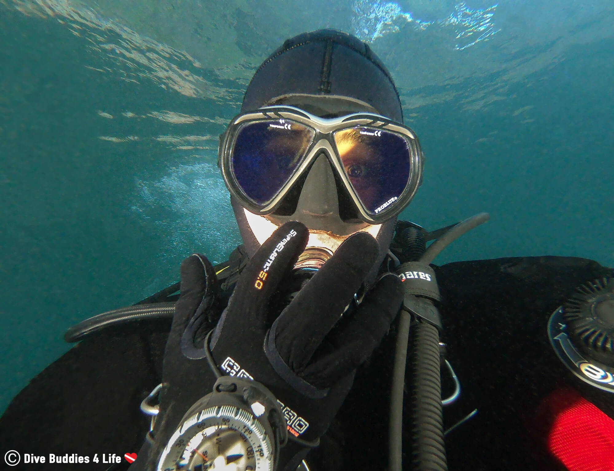 Scuba Diver Joey Looking Surprised At The Amazing Ocean Life In Costa Del Sol, Spain, Europe