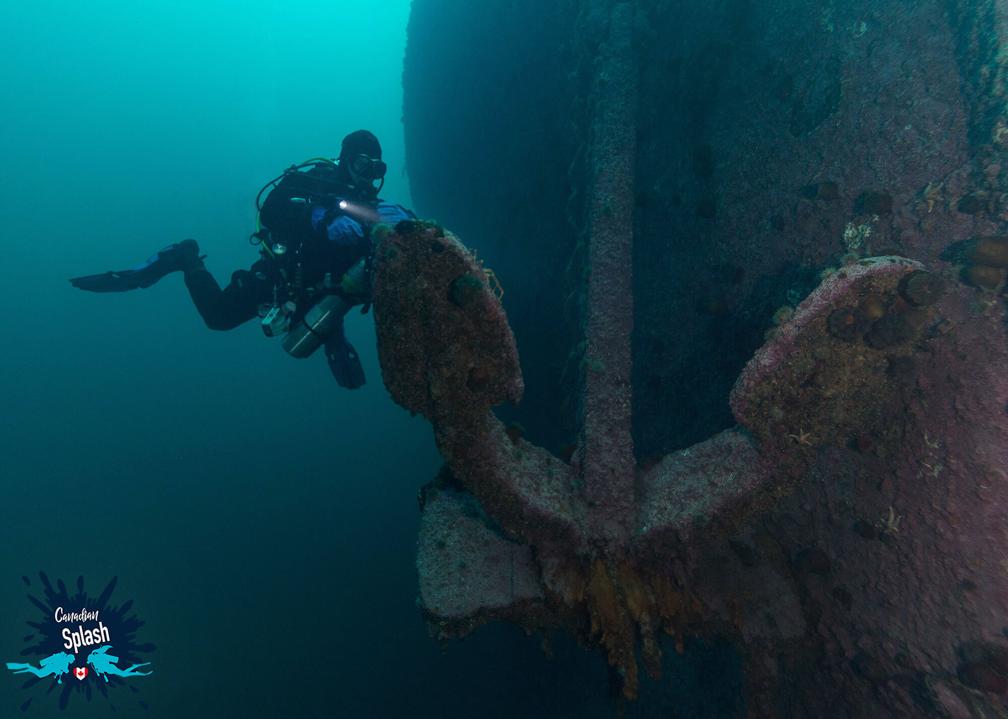 Scuba Diver Joey Swimming Around The Anchor Of The PLM 27 Shipwreck In Bell Island, Newfoundland, Scuba Diving Canada