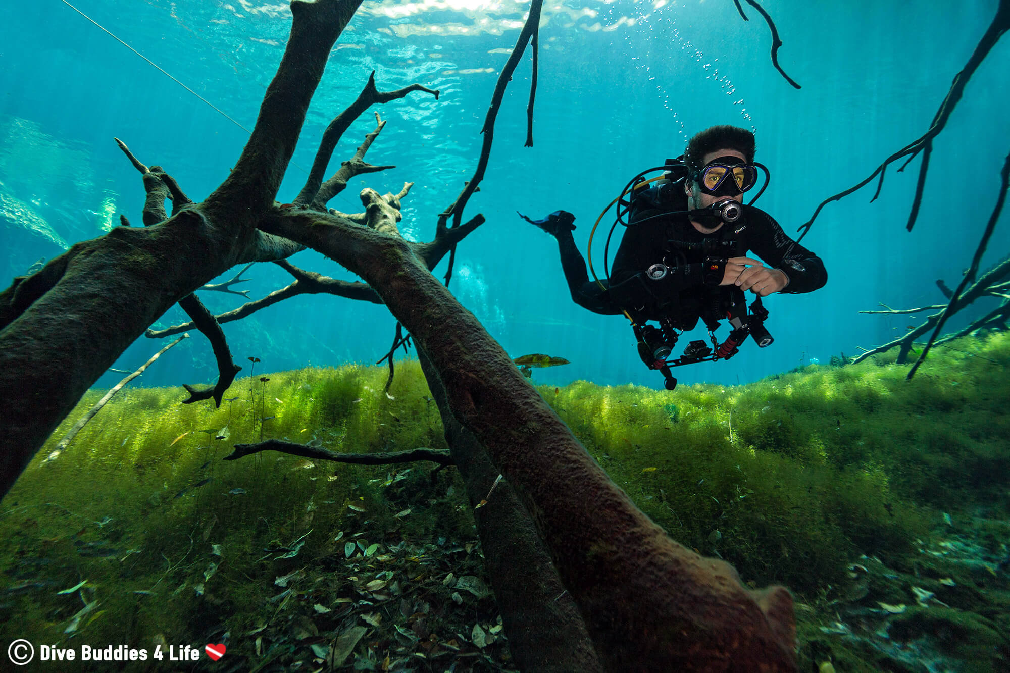 Scuba Diver Joey At The Car Wash Cenote In Tulum, Mexico