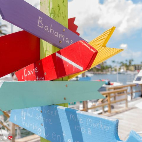 Scuba Diving Arrow Signs At The Rainbow Reef Dive Centre On Key Largo, Florida Keys, USA