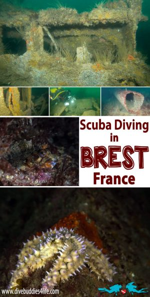 Scuba Diving Brest, France