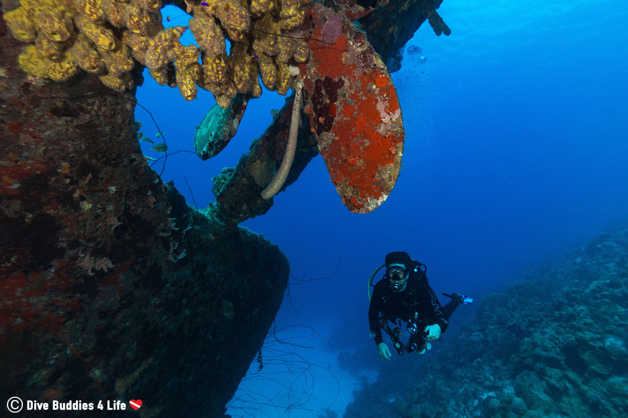 Scuba Diving Joey Exploring The Propeller Of The Hilma Hooker Shipwreck In Bonaire, Dutch Caribbean