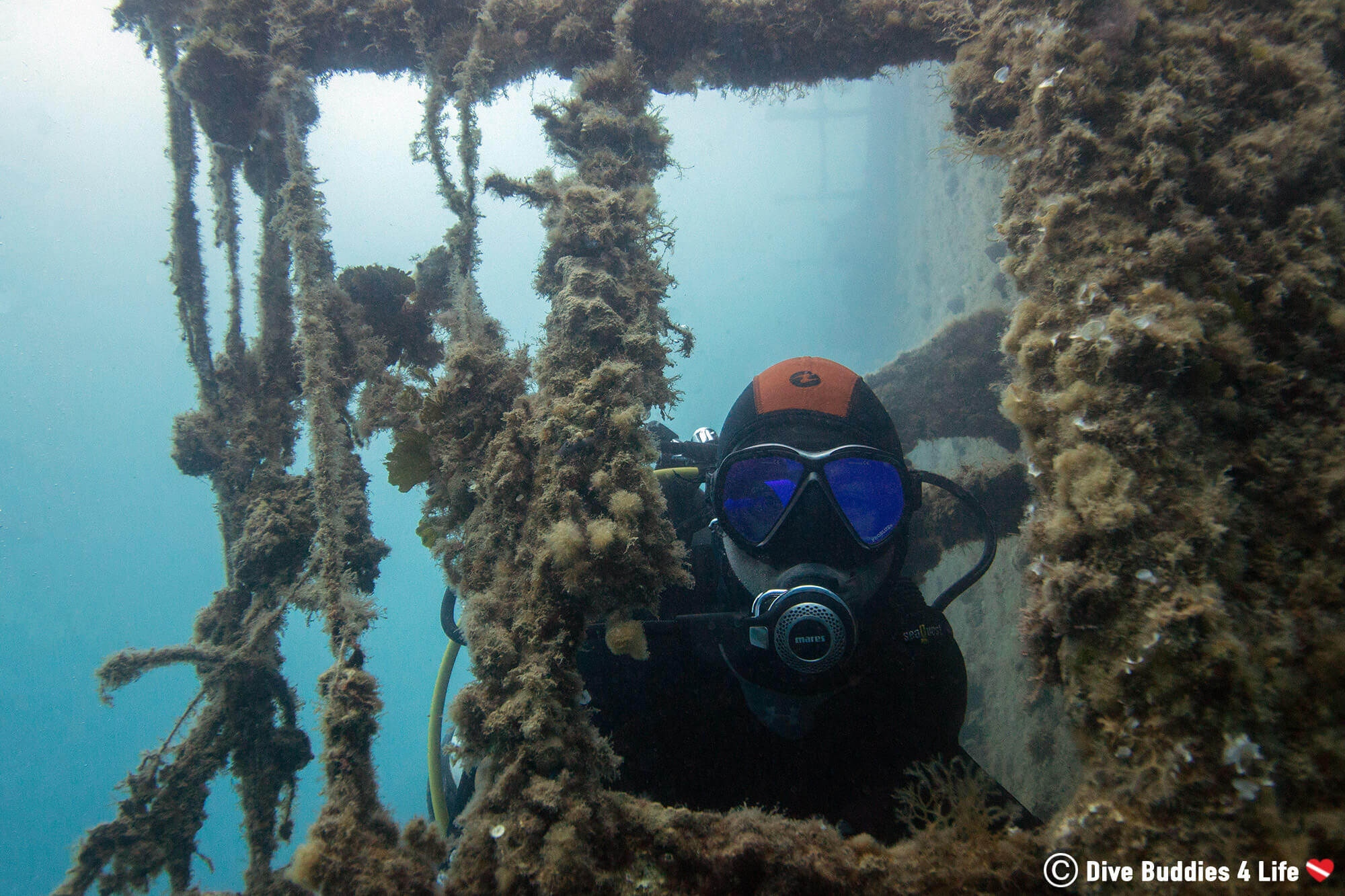 Scuba Diving Joey Peeking Through Some Of The Shipwreck Structure In Albania, Europe