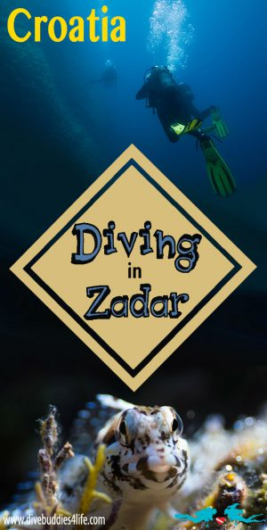 Scuba Diving In Zadar Croatia