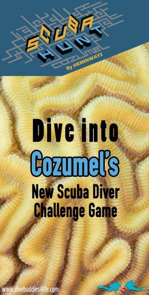 Scuba Hunt Scuba Diver Challenge Game In Cozumel Mexico